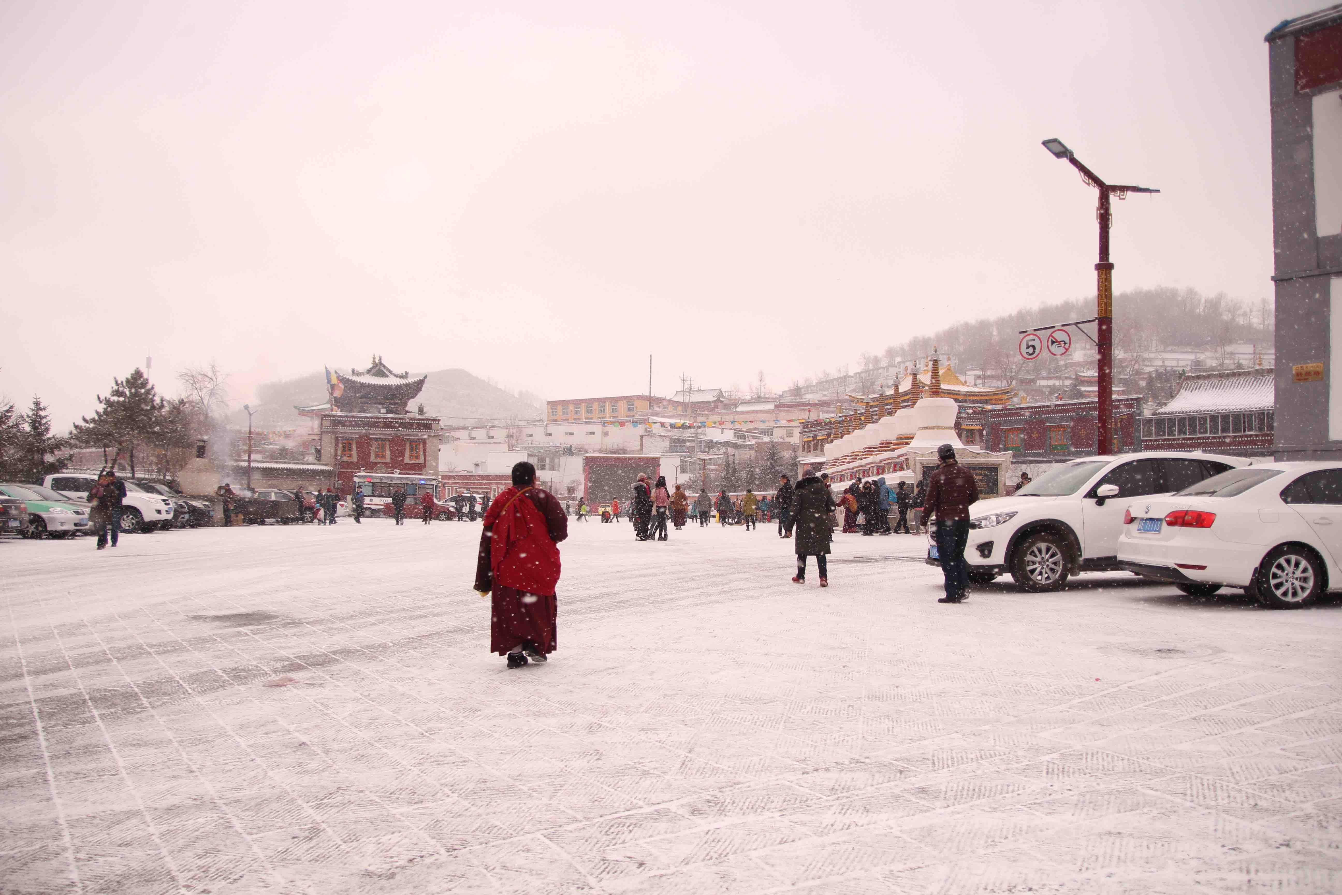 大雪繽紛的塔爾寺。