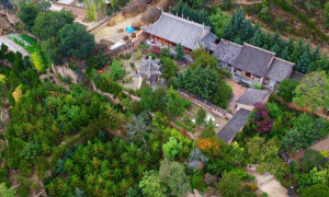 許志強和哥哥許志剛兄弟倆的家,小院古色古香,被青松翠柏包裹。