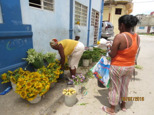 假日街道賣花的小販。