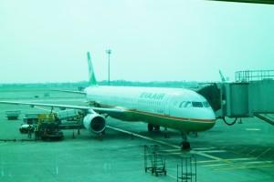 飛機降落在哈爾濱泰平國際機場。(圖/彭信捷)