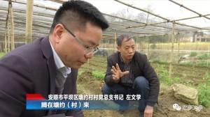 塘約村書記左文學在合作社的農地裡向記者解說該村的農業生產。