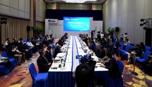 在博鰲論壇舉辦的兩岸企業家圓桌會議。