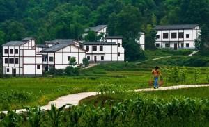 大陸農村的土地所有權是集體的,農民承包地只是得到經營權。