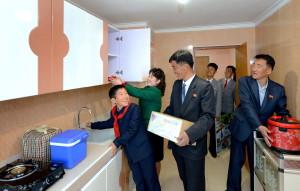 北韓的日常:居民遷入新居 (新華社/朝中社)