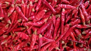 辣椒不是原產自中國,卻成為中國人的最愛。