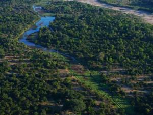 俯瞰馬納普斯國家公園