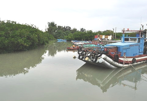 塭仔頭漁港和紅樹林保護區