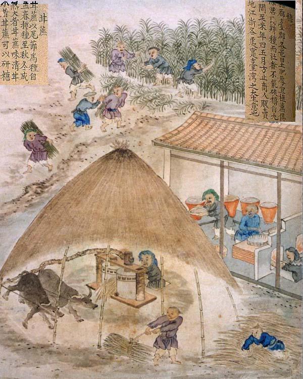 古代糖廓製糖的圖畫。