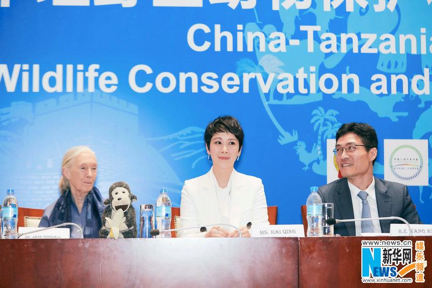 因為《媳婦的美好時代》在非洲熱播,劇中女主海清被坦尚尼亞政府聘為「野生動物保護大使」。(網路圖片)